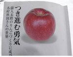 12-23-07-kimura.jpg