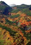 9-29-11-大雪山.jpg